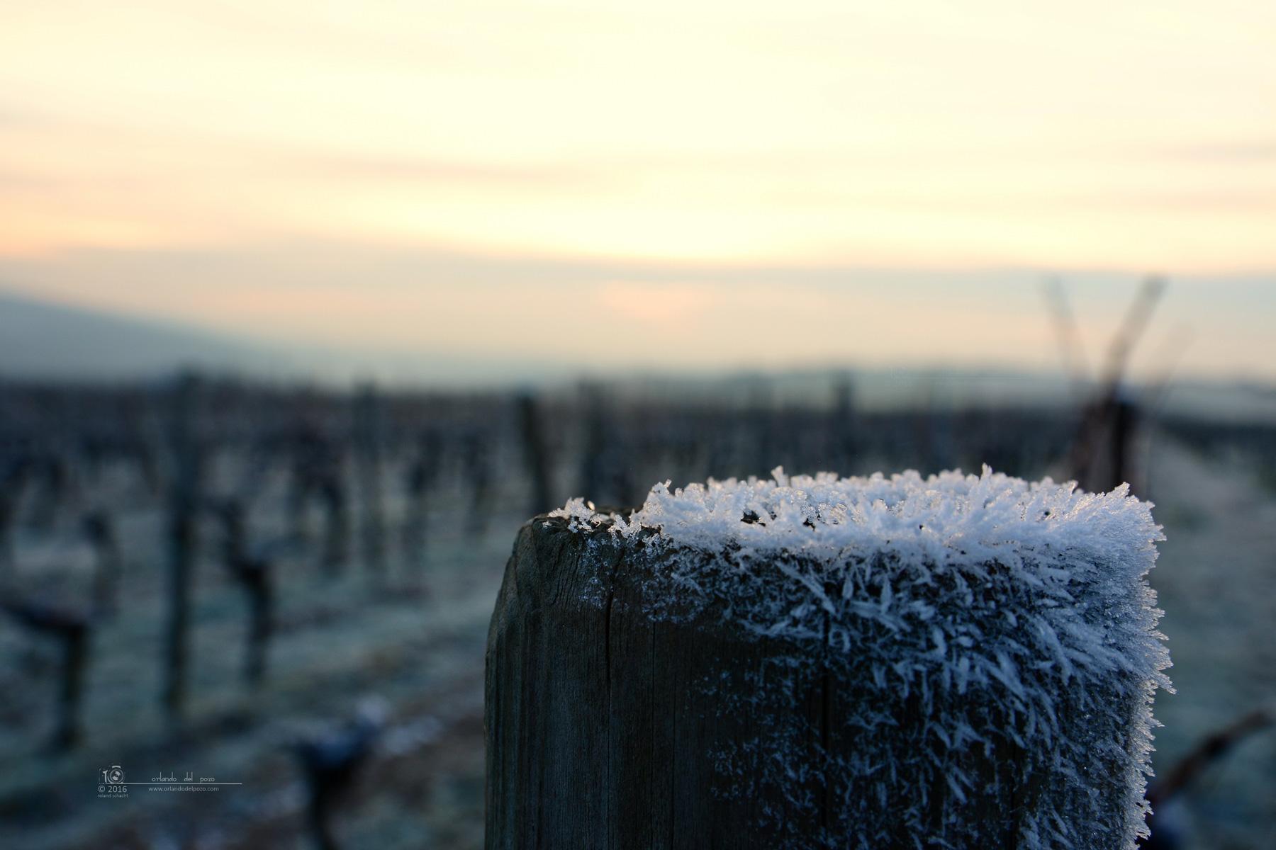 frost_II